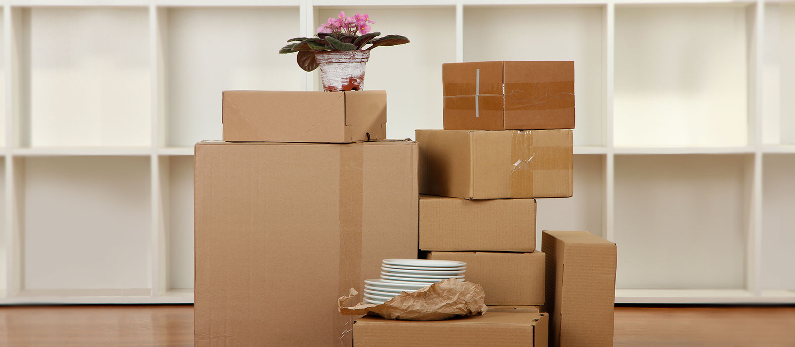Moving In Moving Out Cleaning Services